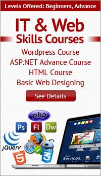 IT & Web Skills